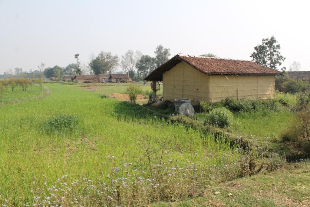 Typische Häuser hier: Ein mit Lehm verputztes Bambus-Stroh-Gerüst.