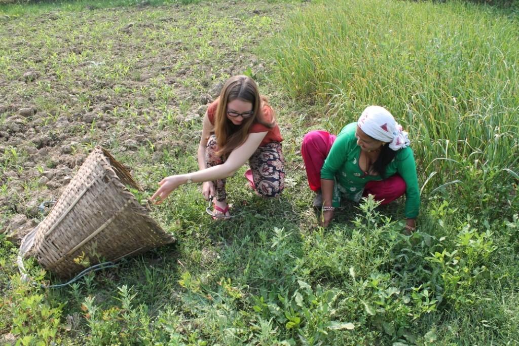 Mit der Gastmutter beim Gras für den Büffel schneiden, mit einer traditionellen Sichel, wie ich sie in der Hand halte.