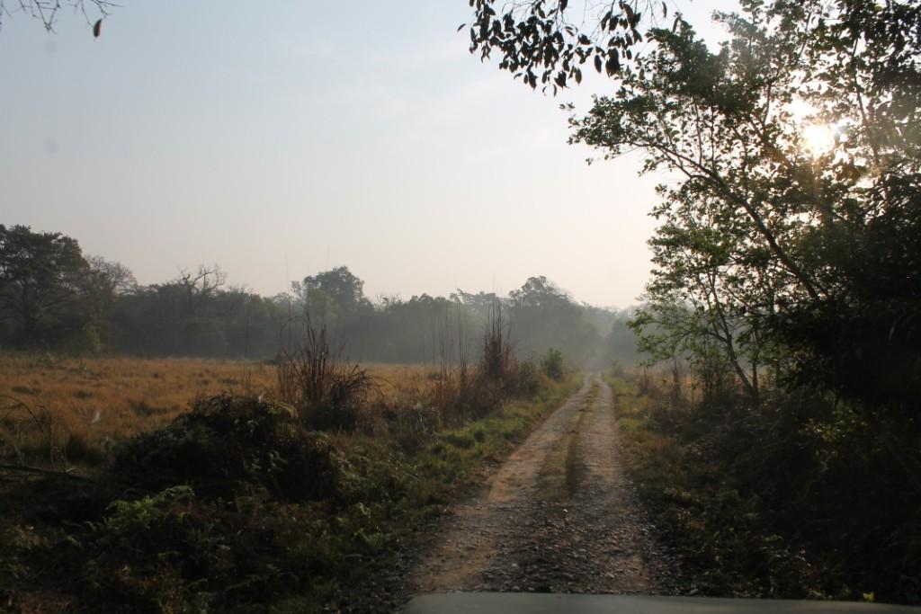 Wir sind also erstmal durch die schöne und abwechlungsreiche Natur gefahren.