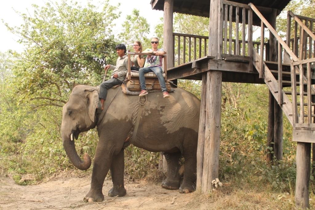 Auf dem Rücken ging es dann nochmal los in die Wildnis.